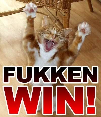 cat-fukken-win-5990-1