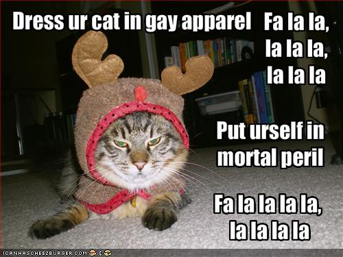 funny-pictures-cat-is-dressed-like-a-reindeer-and-might-kill-you